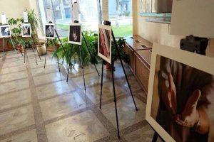 """Фотовыставка """"Руки заботы"""" открылась в Минтруда и соцзащиты"""