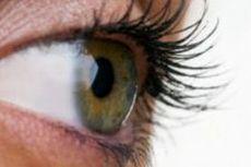 Искусственная роговица: восстановление зрения у незрячих