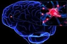 Вакцина против инсульта и болезни Альцгеймера